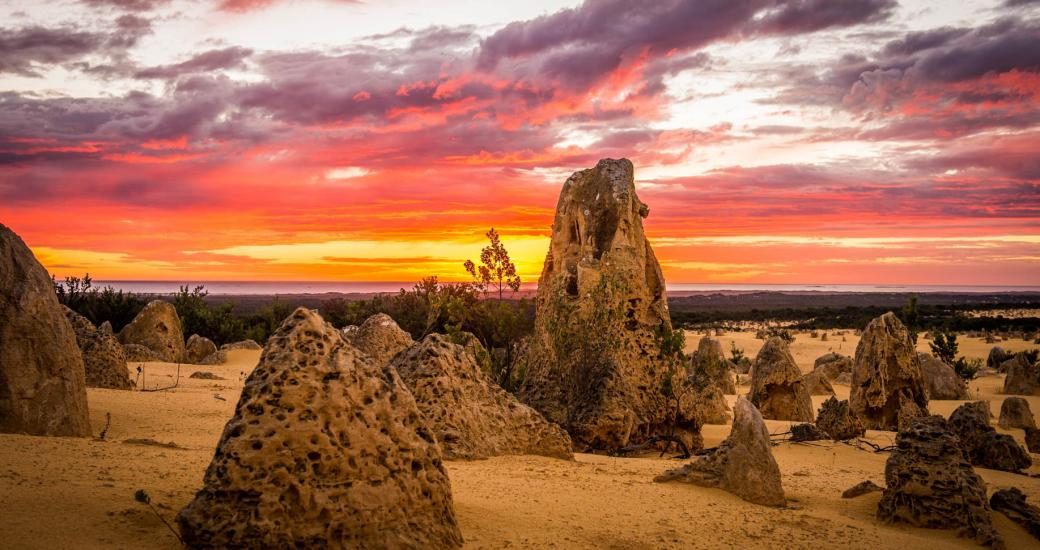Cervantes Region - Pinnacles of Nambung National Park